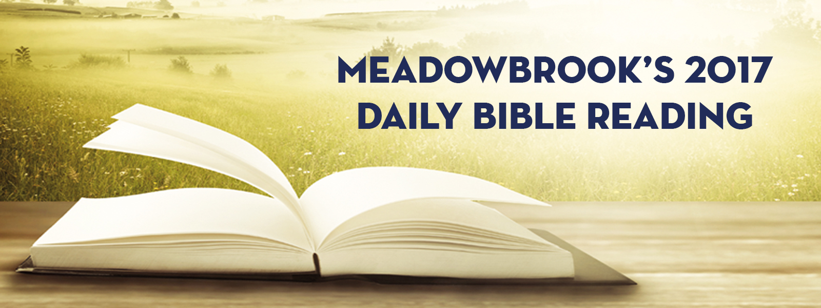 2017 Daily Bible Reading